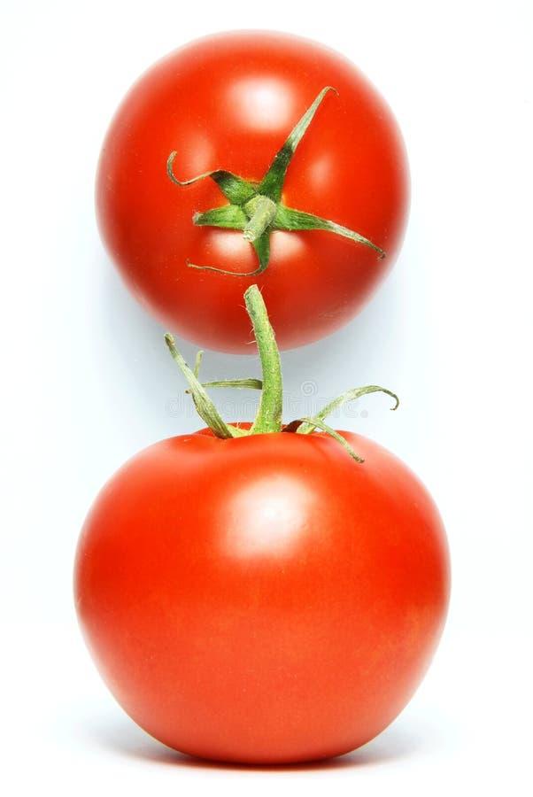 свежие изолированные томаты стоковое фото rf