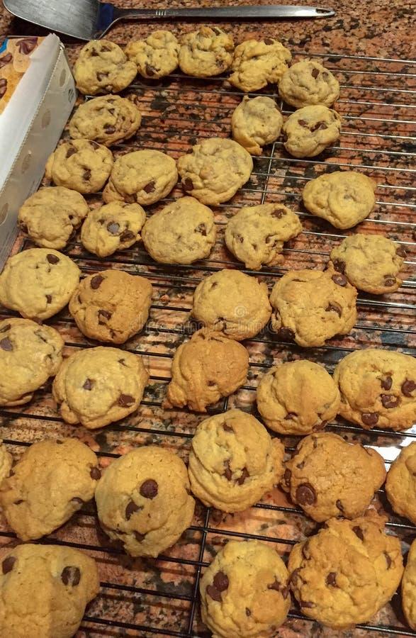 Свежие испеченные домодельные печенья обломока шоколада стоковое изображение