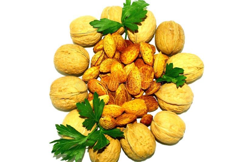 Свежие и здоровые грецкие орехи и миндалины на белой предпосылке стоковые изображения rf