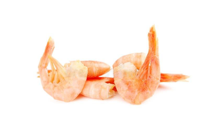 Свежие кипеть креветки стоковое изображение