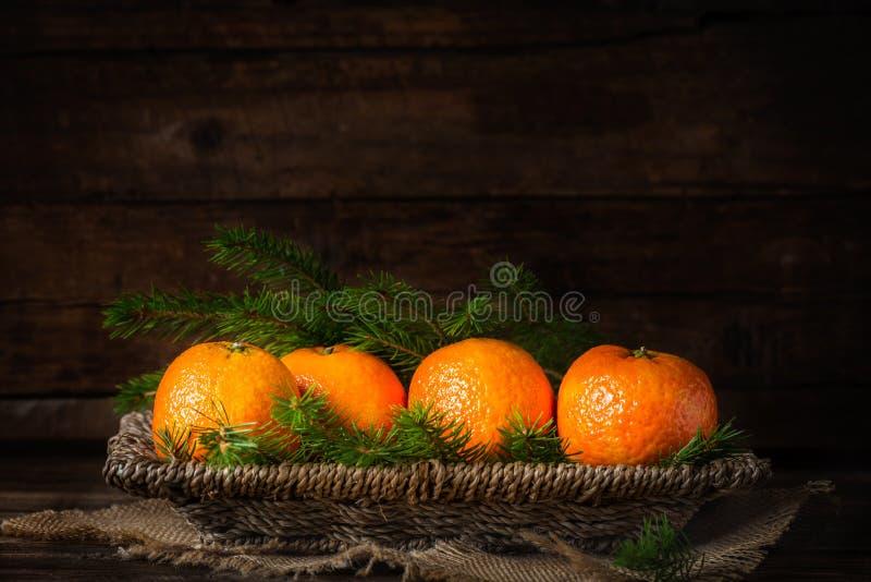 Свежие Клементины или Tangerines и ветви дерева Xmas стоковые фото
