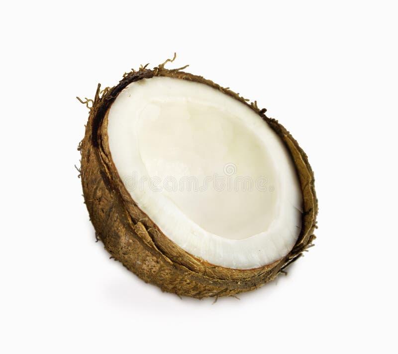 Свежие кокосы изолированные на белизне стоковая фотография