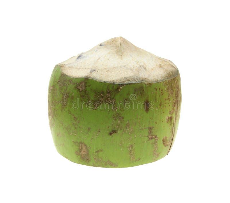 Свежие кокосы на белизне Кокос тропического плодоовощ свежий стоковое фото rf
