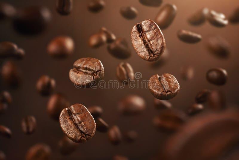 Свежие кофейные зерна падая вниз с космосом экземпляра стоковое изображение rf