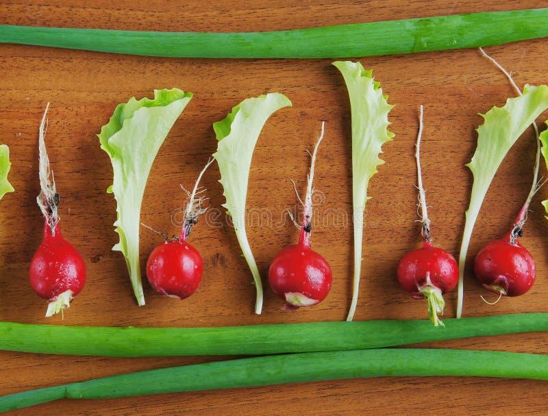 Свежие красной листья редиски и салата на деревянной поверхности стоковое изображение rf