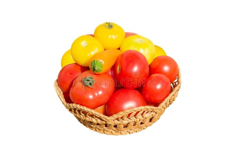 Свежие красные и желтые домодельные томаты в плетеной плите, изолированной на белой предпосылке, стоковая фотография