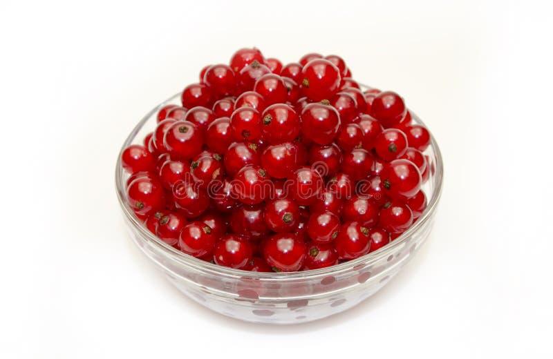 Свежие красные смородины в стеклянном шаре стоковая фотография