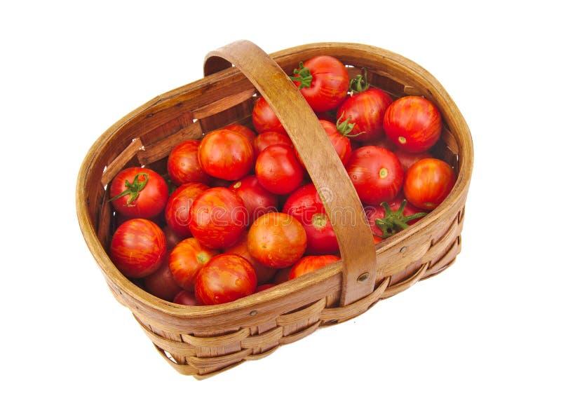 Свежие красные томаты вишни в изолированной корзине стоковое фото