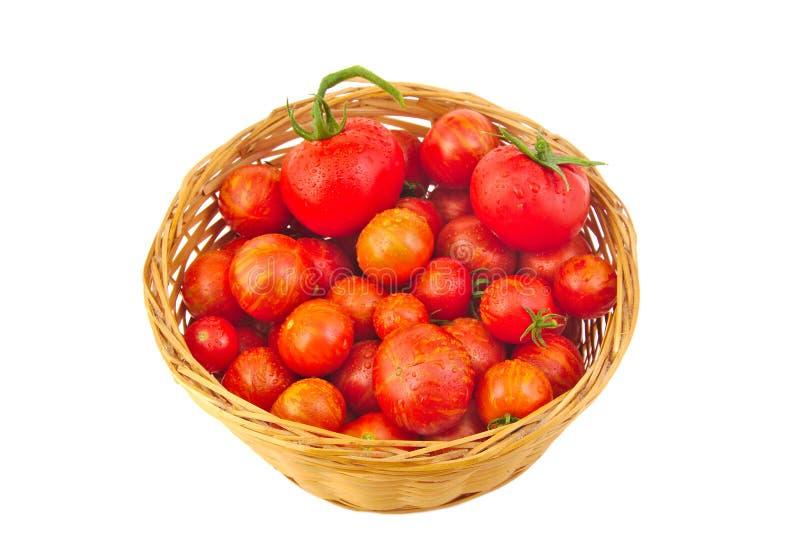 Свежие красные томаты в корзине изолированной на белизне стоковые фотографии rf