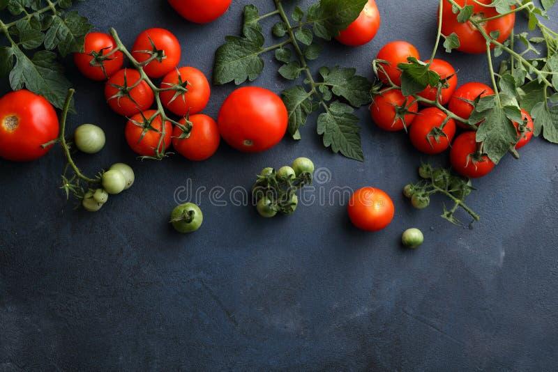 Свежие красные томаты на шифере стоковое изображение rf