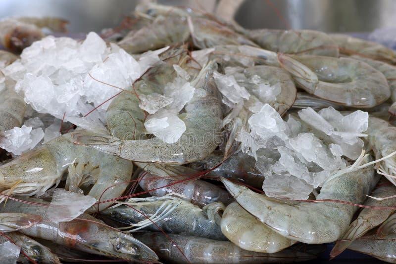 Свежие креветки в рынке морепродуктов для предпосылки стоковое фото