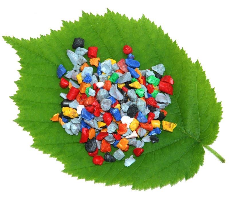 свежие листья перезатачивают стоковая фотография