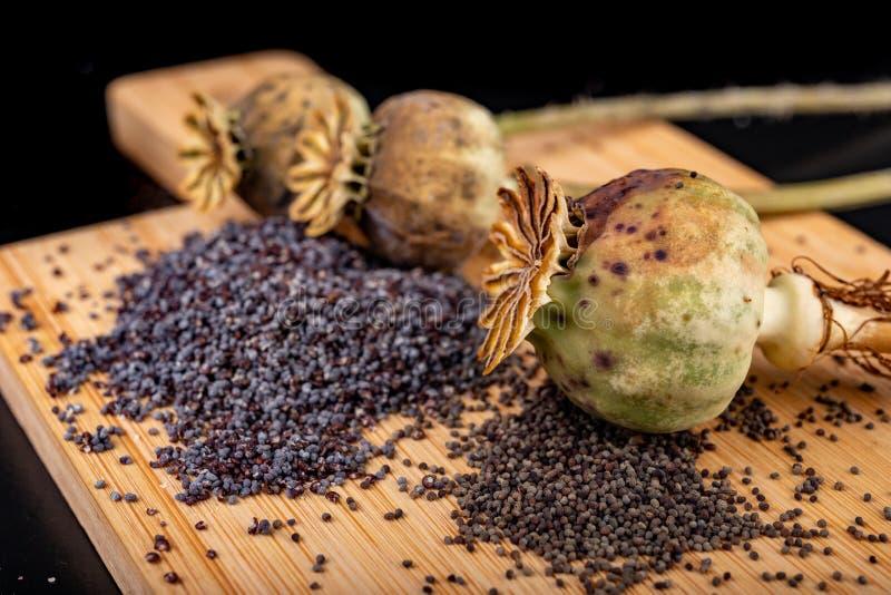Свежие маковые семенена полили на деревянной доске кухни Различные маковые семенена подготовленные для печениь кухни стоковые фотографии rf