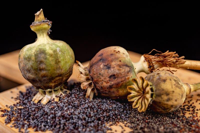 Свежие маковые семенена полили на деревянной доске кухни Различные маковые семенена подготовленные для печениь кухни стоковые изображения