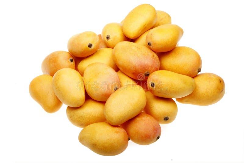 свежие мангоы стоковое изображение rf