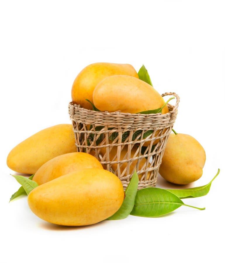 Свежие манго и листья в корзине стоковое фото rf