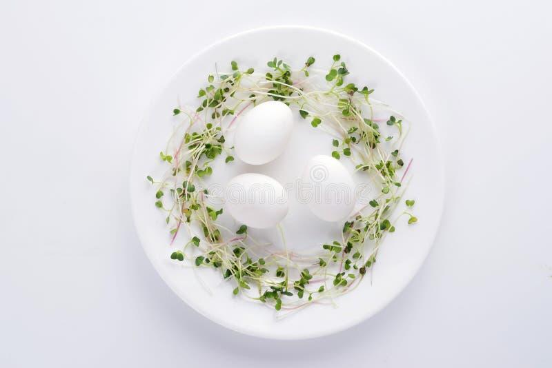 Свежие микро- зеленые цвета и естественные яйца на белой плите на белой предпосылке стоковые изображения