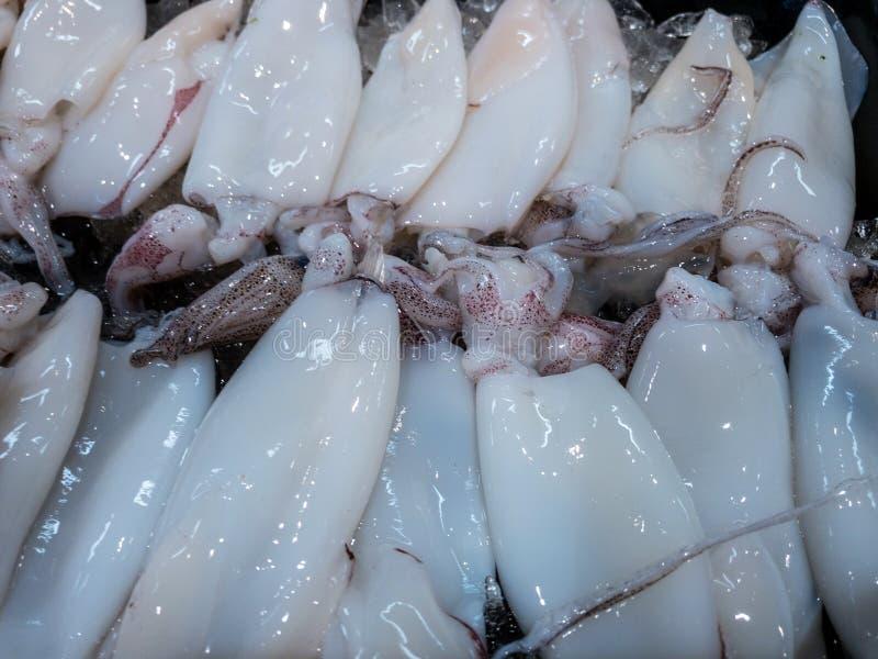 Свежие морепродукты включая устрицу, раковину, кальмара и креветку в корзине льда стоковое фото