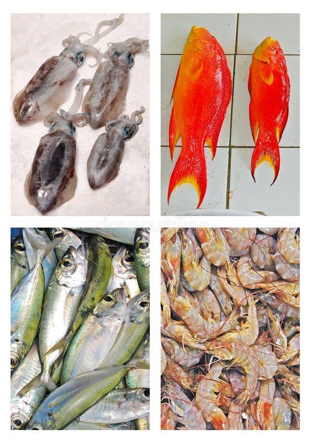 Download Свежие морепродукты на дисплее для продажи Стоковое Фото - изображение насчитывающей плодоовощ, carapace: 40583668