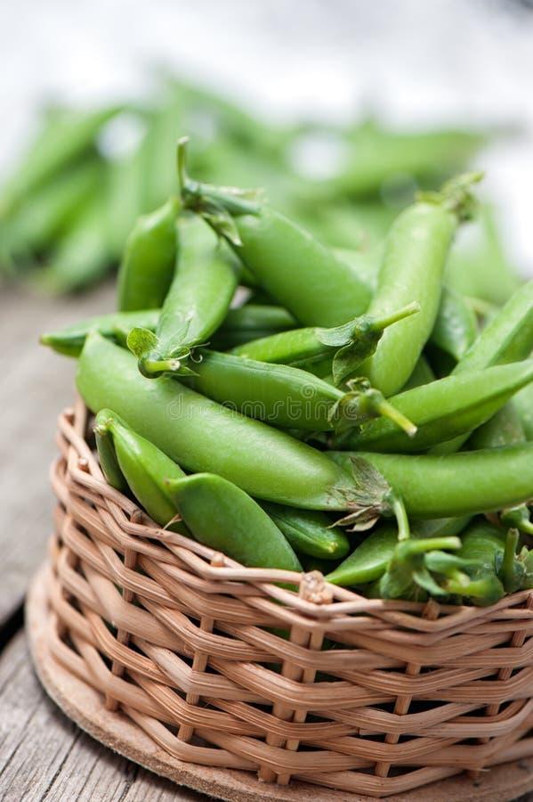 Свежие, молодые зеленые горохи стоковая фотография