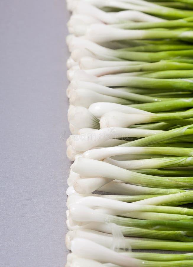 Download Свежие молодые зеленые луки Стоковое Изображение - изображение насчитывающей органическо, салат: 41657997