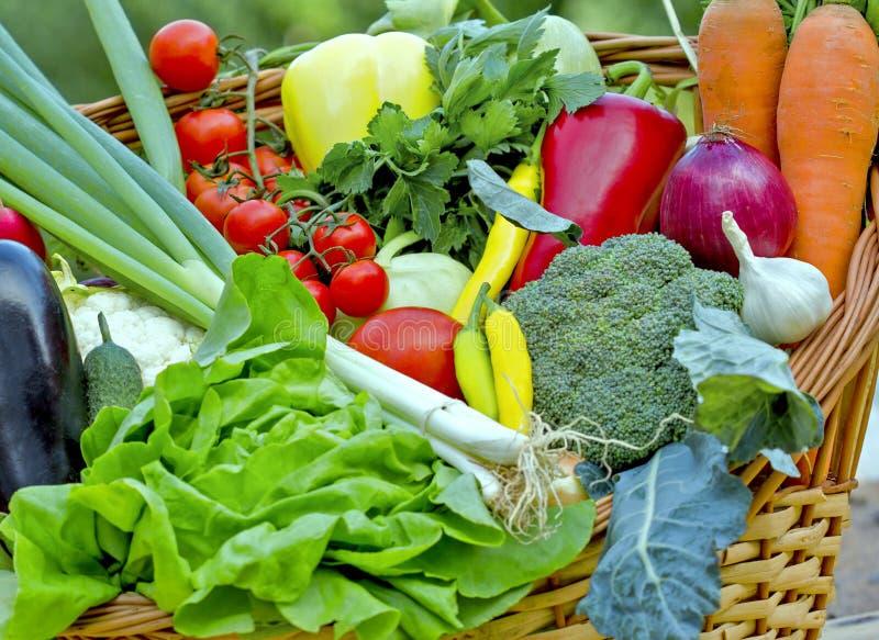 Свежие овощи в плетеной корзине стоковое изображение