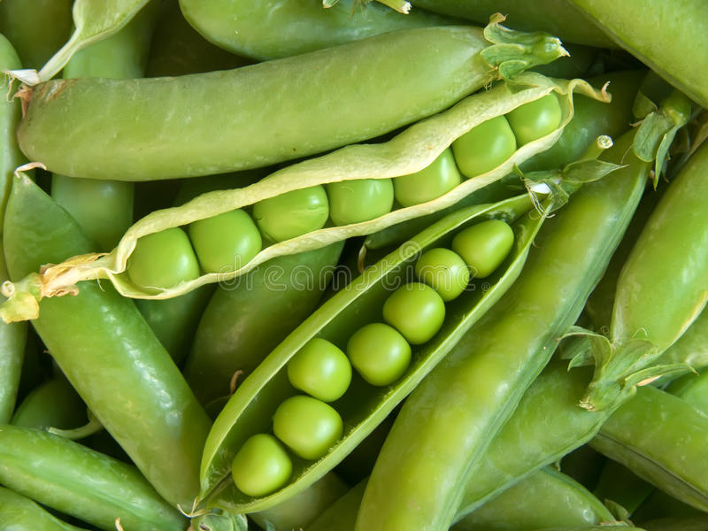 свежие овощи горохов стоковые изображения