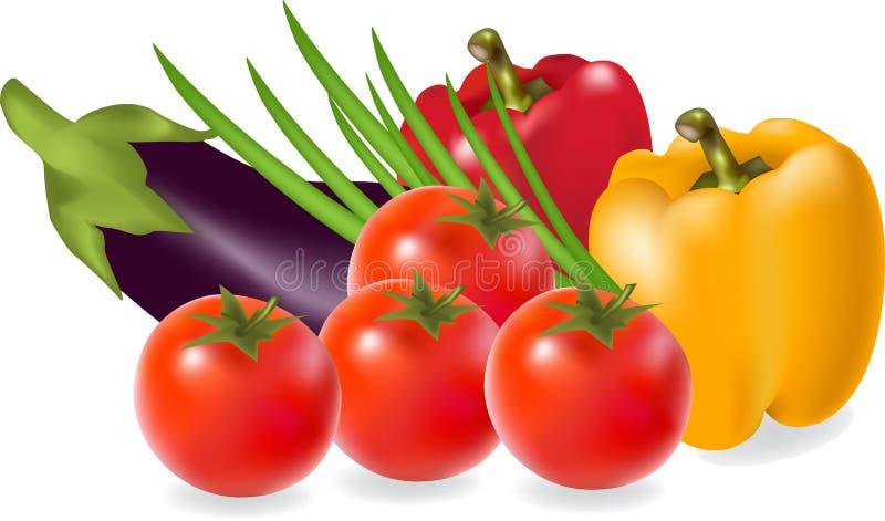 Свежие овощи иллюстрация штока