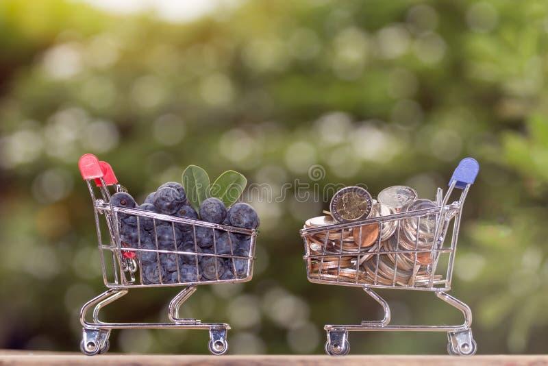 Свежие органические голубики в мини магазинной тележкае стоковые фотографии rf