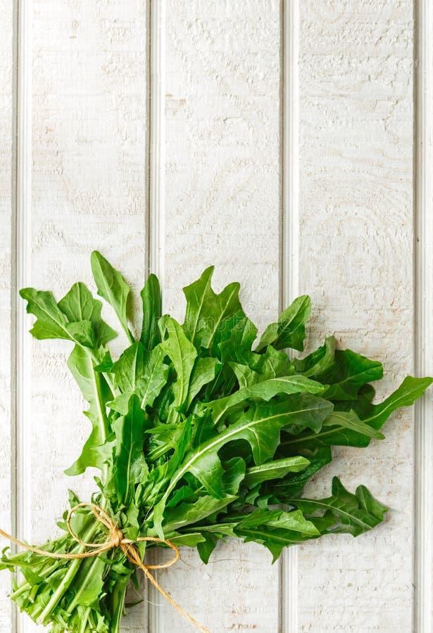 Свежие органические зеленые цвета одуванчика стоковые фотографии rf