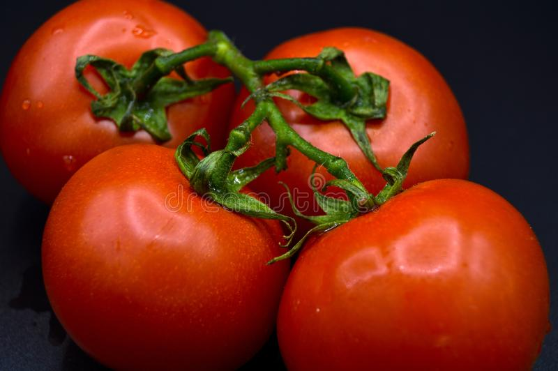 Свежие органические красные томаты связывают стоковые изображения