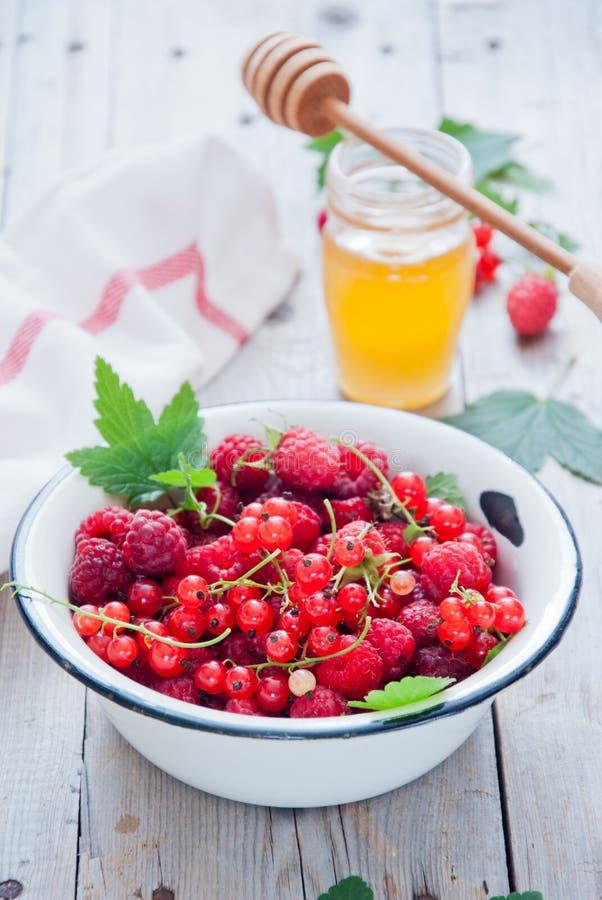 Свежие органические красные ягоды в белом шаре эмали стоковое изображение rf