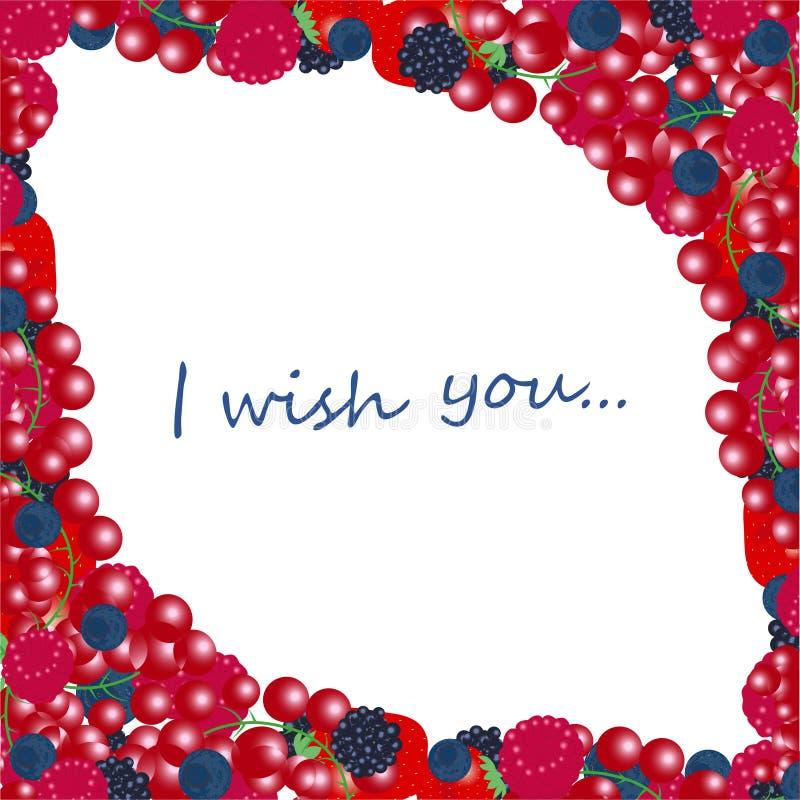 Свежие органические ягоды и плоды лета Поленика ежевики крыжовника голубики клубники иллюстрация вектора