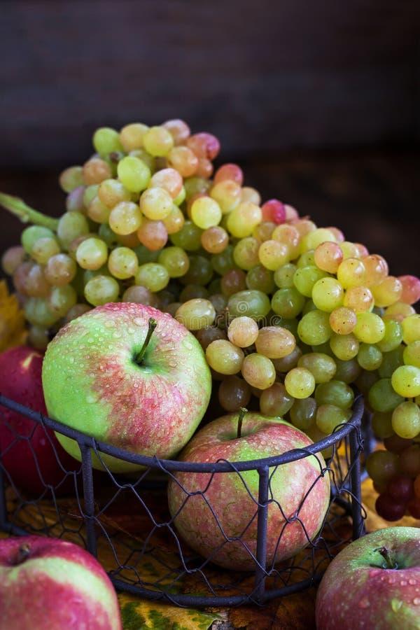 Свежие осенние яблоки и виноград стоковые фотографии rf