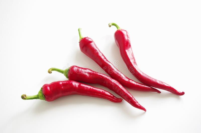 Свежие перцы красного chili на белой предпосылке, идее проекта меню стоковые фотографии rf
