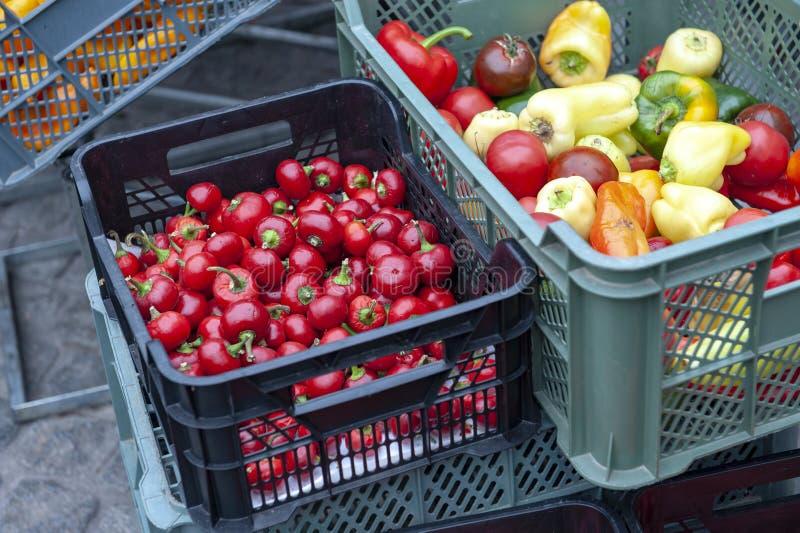 Свежие перцы шарика вишни, пимент или красные сладкие перцы чилей проданные на рынке стоковые изображения rf