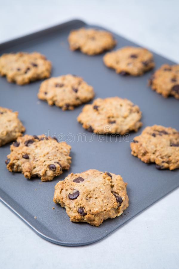 Свежие печенья обломока шоколада стоковая фотография