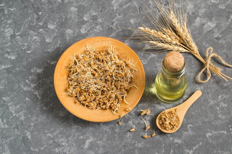 Свежие пусканные ростии семена пшеницы и семенозачаток пшеницы смазывают стоковое фото rf