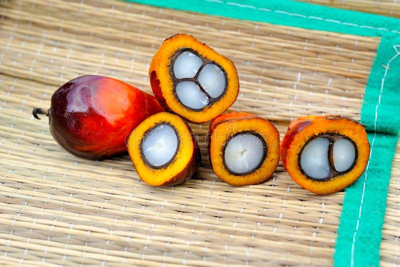 Свежие плодоовощи масличной пальмы стоковая фотография