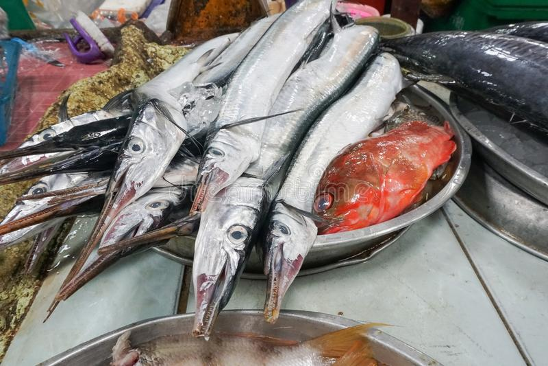 Свежие рыбы барракуды на рынке фермеров стоковые изображения