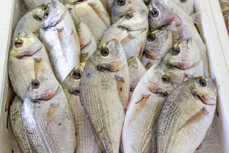 Свежие рыбы в рынке стоковое изображение