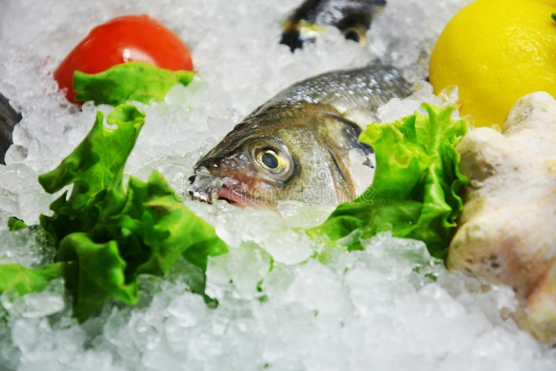 Свежие рыбы и лед стоковая фотография rf