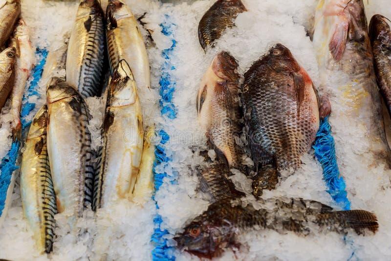 Свежие рыбы моря лежа на льде на счетчике в гастрономе стоковое фото rf