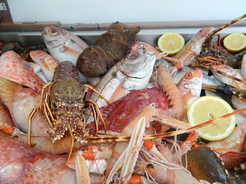 Свежие рыбы на ресторане L'Approdo в острове Капри стоковое фото rf