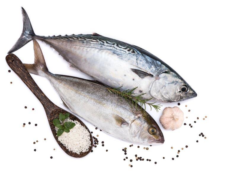 Свежие рыбы, рис и специи стоковая фотография rf