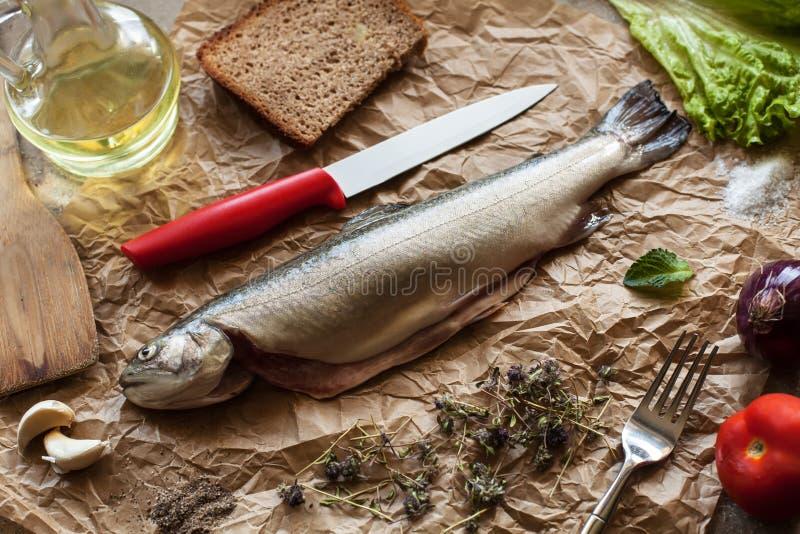 Свежие рыбы с специями и ингридиентами, который нужно сварить стоковое изображение
