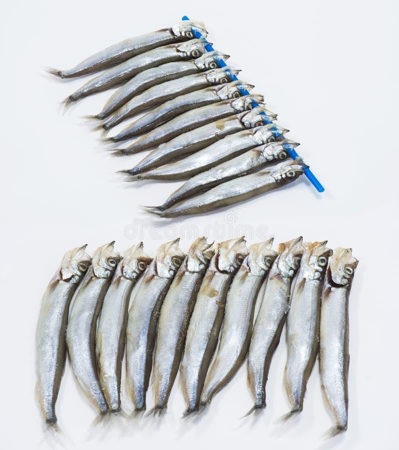 Свежие рыбы Shishamo стоковая фотография rf