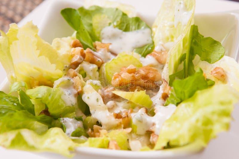 Свежие салат и гайки стоковое фото rf