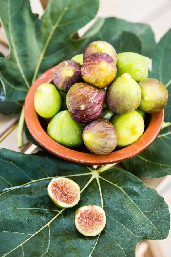 Свежие смоквы в шаре на зеленых листьях, вертикали глины, плодах лета стоковые изображения rf