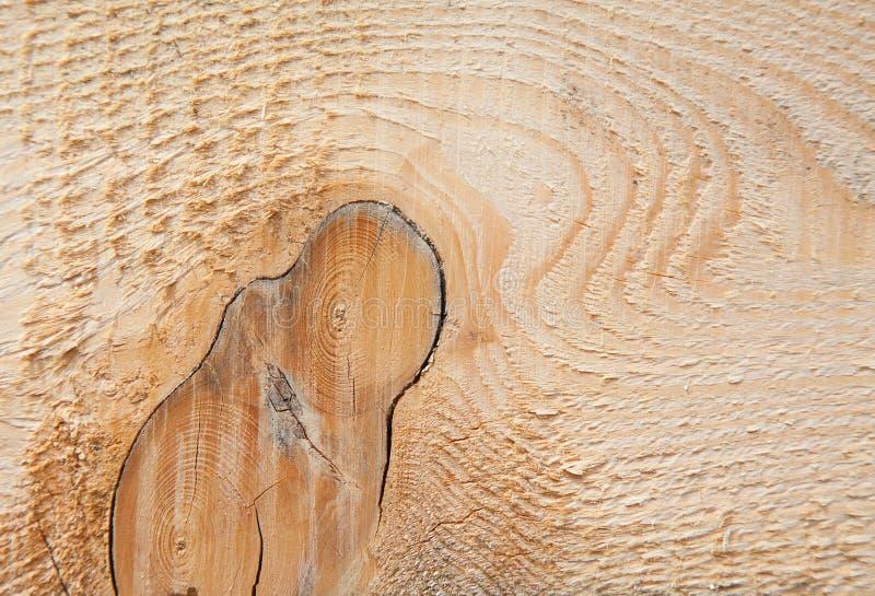 свежие стержни деревянные стоковое изображение